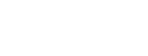 eis logo white